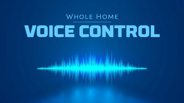 image02-VoiceContol
